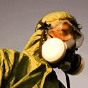 Photo  de photo : DR www.mdrgf.org
