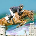 Photo  de DR 7e Championnat du Monde Universitaire d'équitation - La Rochelle