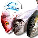 Photo  de © Savoir-Faire La Rochelle, poissons, crustacés et fruits de mer
